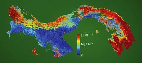 efa3c06647cc Le Panama est le premier pays du monde à disposer d'une carte complète en  haute-résolution du carbone séquestré naturellement sur son territoire, ...