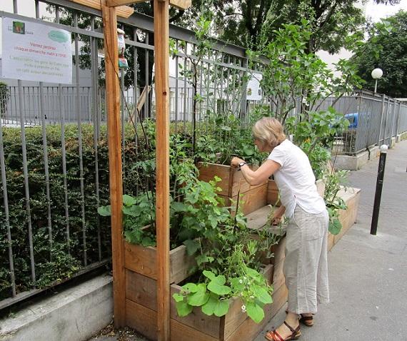 Des arbres fruitiers rassemblent les habitants de la chapelle paris - Enlever encombrants paris ...