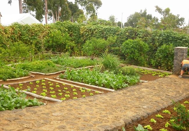 Culture Et Jardin Partage A La Reunion La Dynamique Alternative