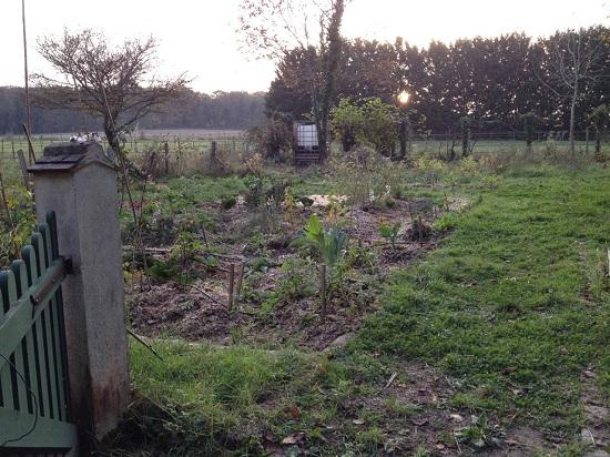 La chronique du jardin sans p trole ao t 2014 mars 2015 - Il faut cultiver notre jardin analyse ...