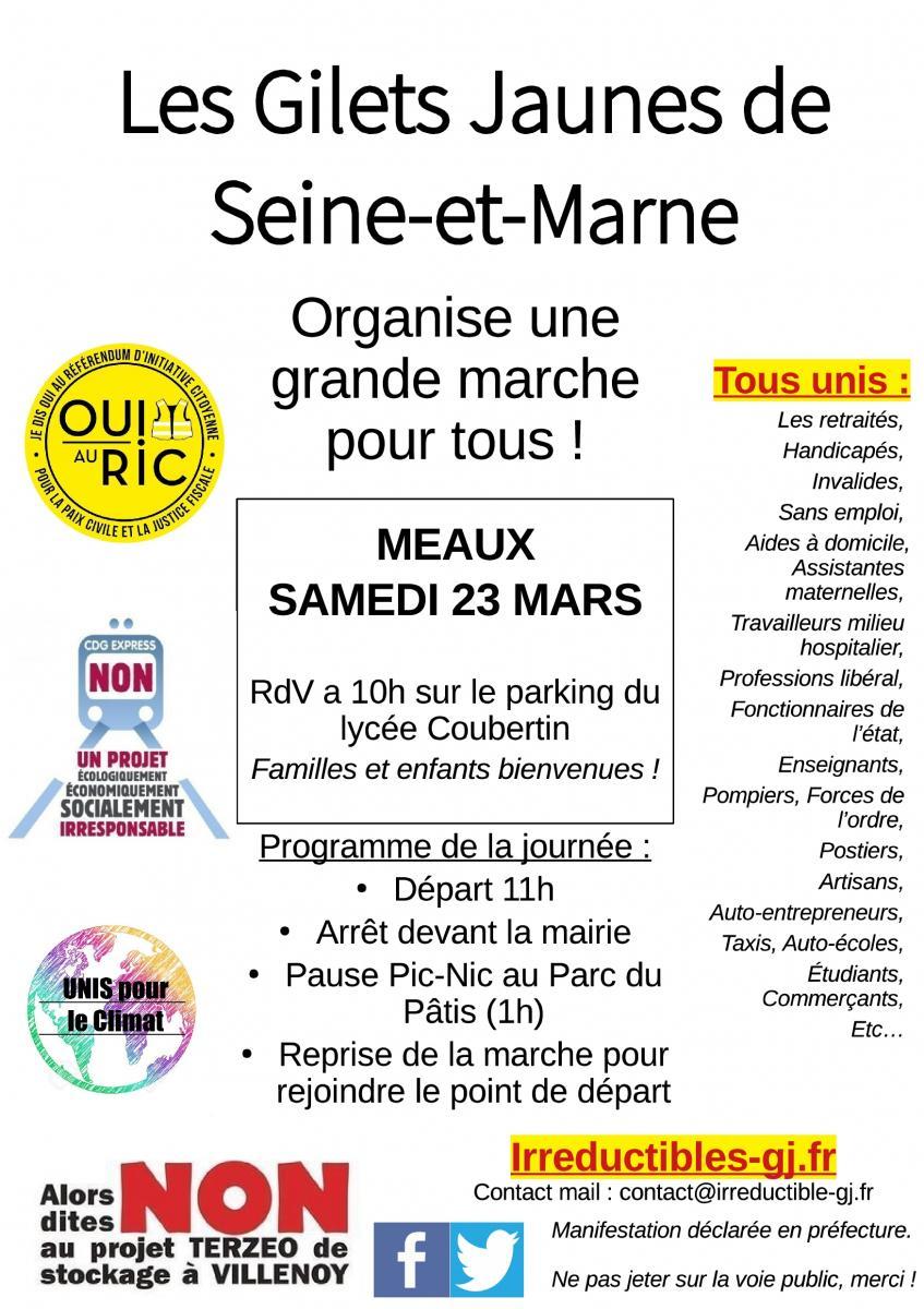 Grande marche des Gilets jaunes, à Meaux (Seine-et-Marne)