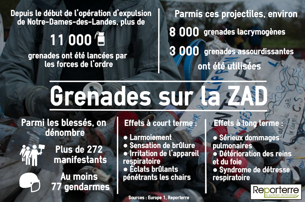En 10 jours, une pluie de 11000 projectiles s'est abattue sur le bocage nantais de Notre-Dames-des-Landes. Quels sont-ils? Quels risques présentent-ils? Reporterre a cherché des réponses.