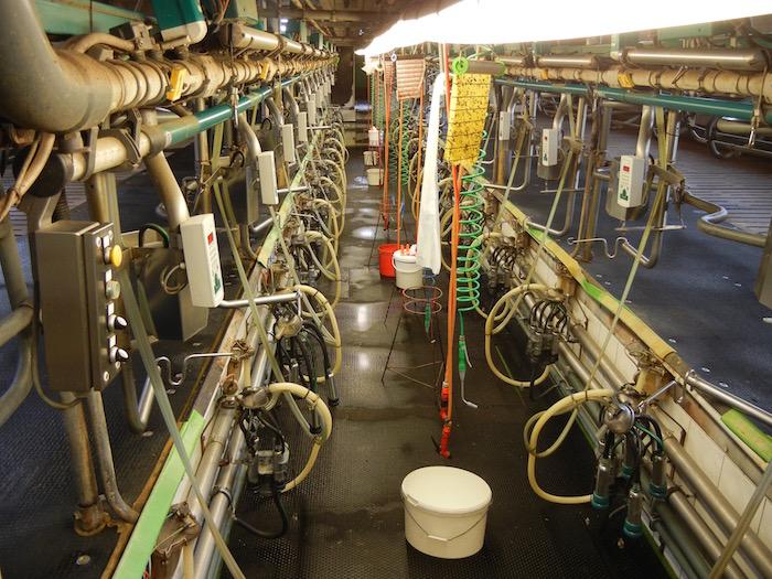 en allemagne les ferme usines deviennent la r 232 gle malgr 233 une rentabilit 233 incertaine