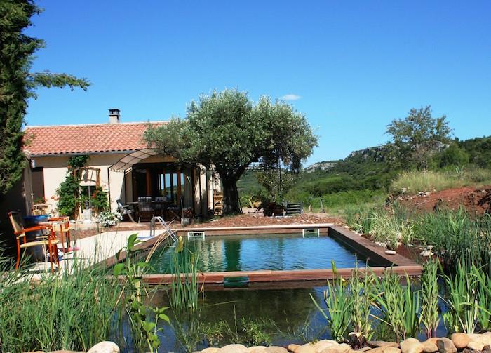 Les piscines naturelles se la coulent douce - Cout piscine naturelle ...