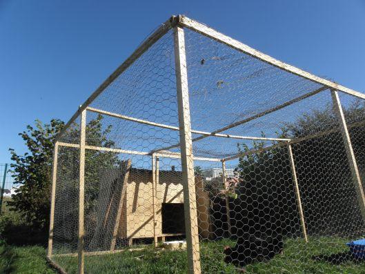 J ai test pour vous lever des poules dans mon jardin - Maison pour les poules ...