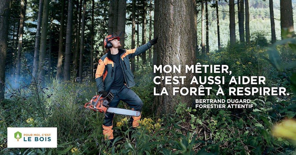 L'APPEL DE LA FORÊT Pourmoisc_estlebois