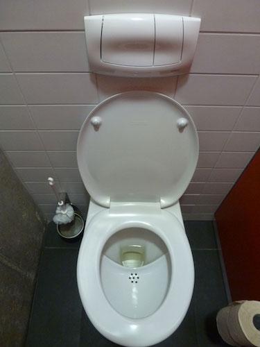 Avec les toilettes sèches, la pollution devient ressource