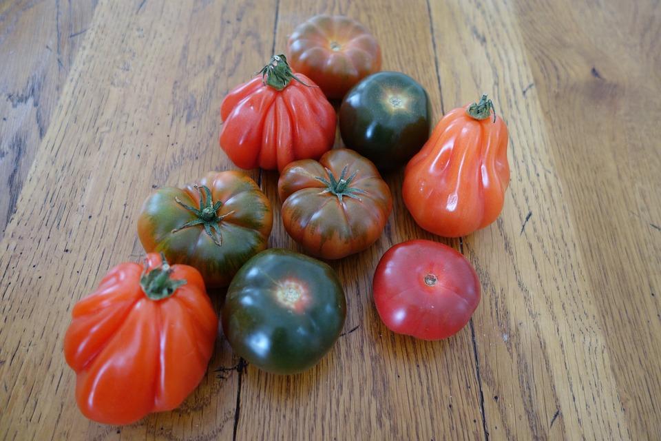 PAYSANS : TOUS DES PLOUCS ? et perdus pour un avenir révolutionnaire ?  Tomatoes-3311129_960_720