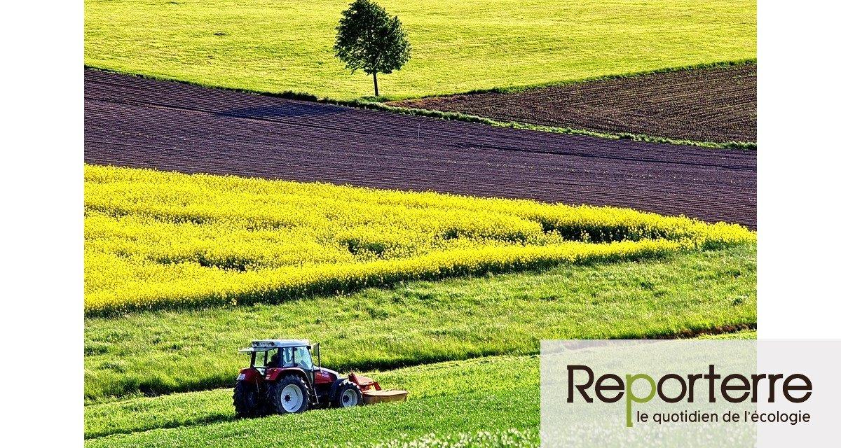 Top départ du débat national sur l'avenir de l'agriculture