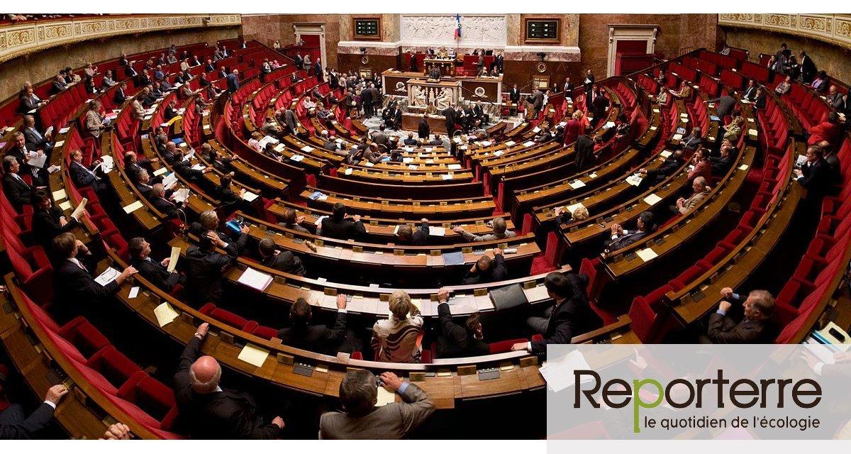 Sénateurs et députés s'accordent sur la loi Asap, une nouvelle entaille dans le droit de l'environnement