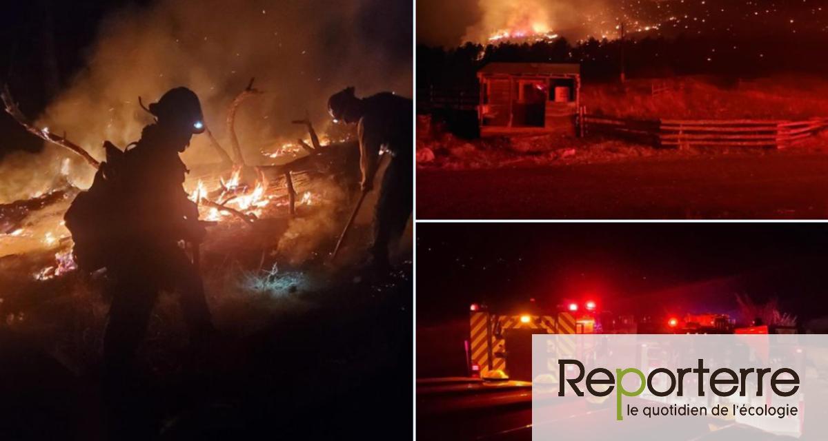 Le Colorado ravagé par le plus grand incendie de son histoire