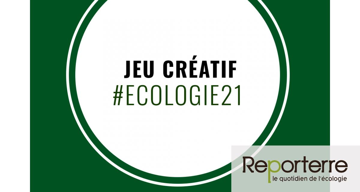 Participez au jeu créatif « L'écologie du XXIe siècle » !