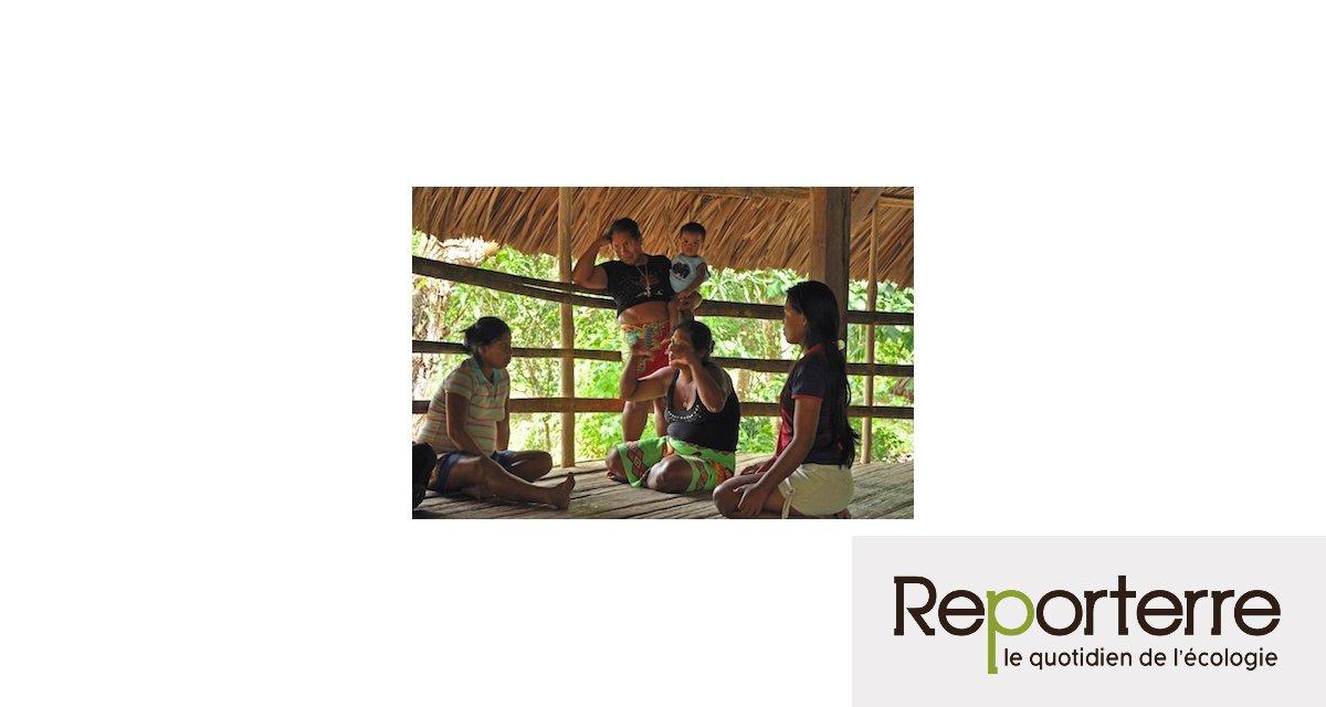 5231aa066c11 Les Indiens du Panama rejettent le mirage de la finance carbone