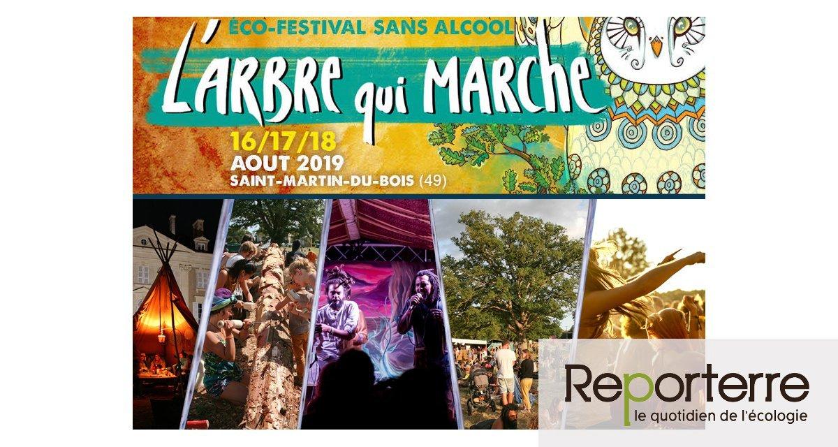 Ecofestival L'Arbre qui marche, à Segré-en-Anjou-Bleu (Maine-et-Loire)