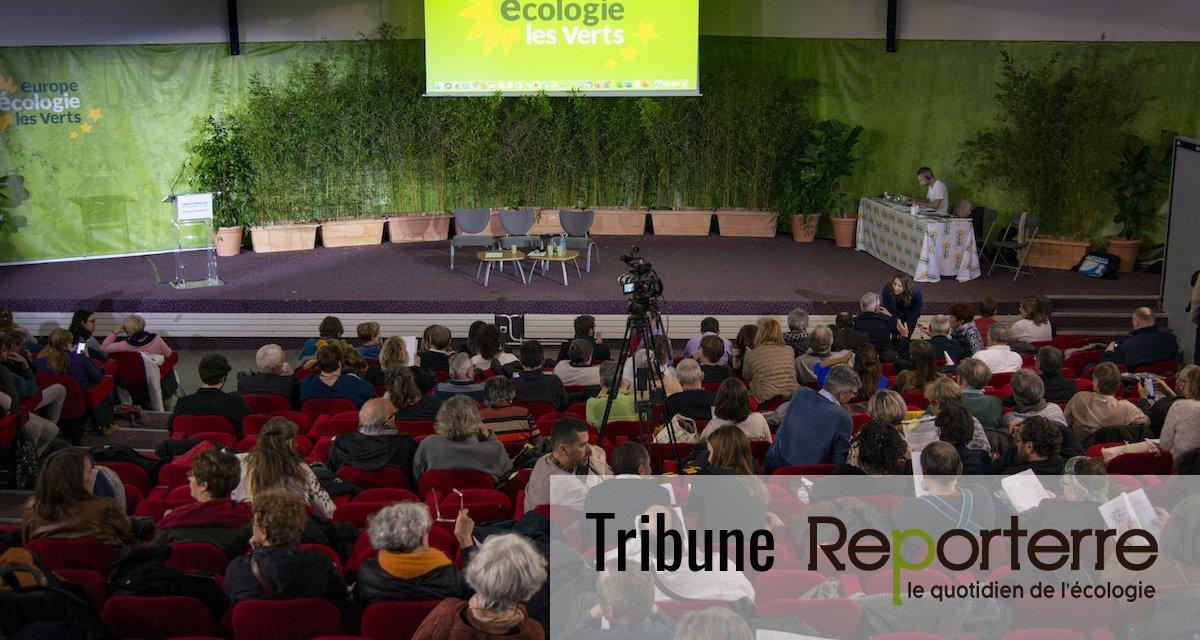 Les alliances troubles d'Europe Écologie-Les Verts aux municipales