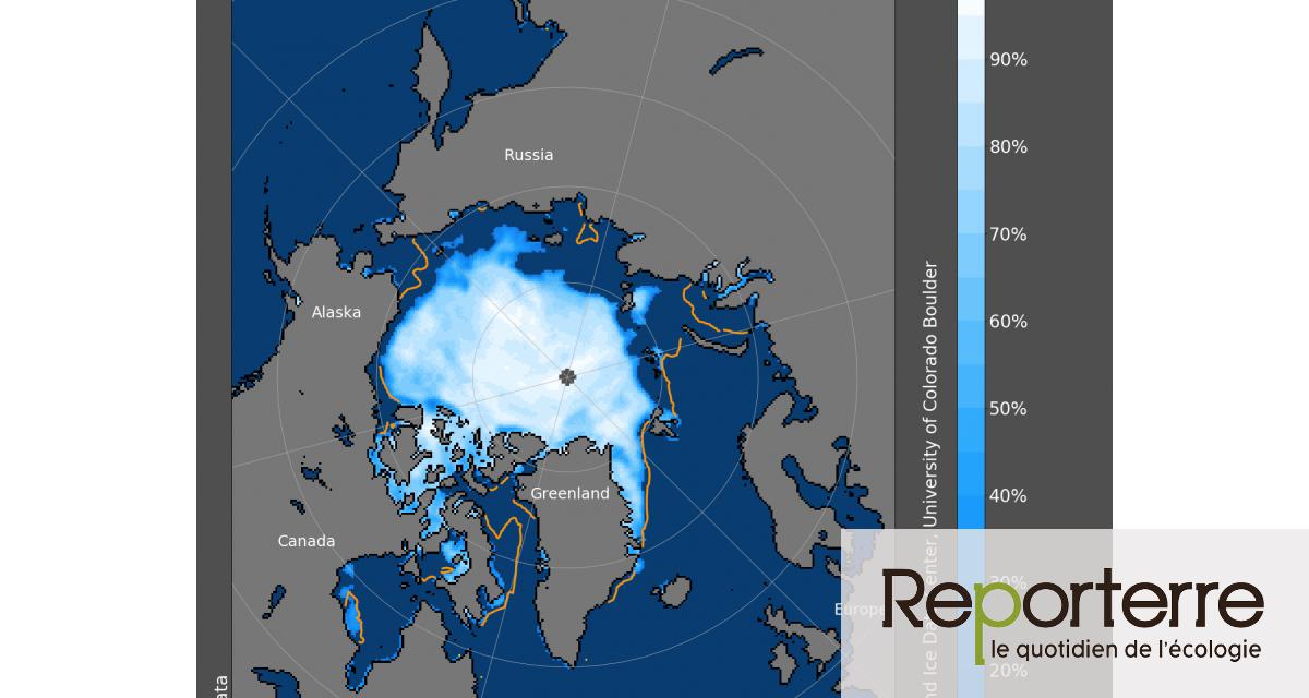 La banquise en Sibérie fond deux fois plus vite que d'ordinaire