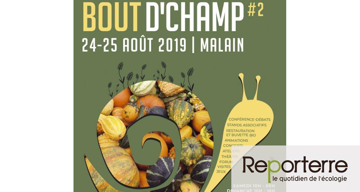 Festival Atout Bout'Champ