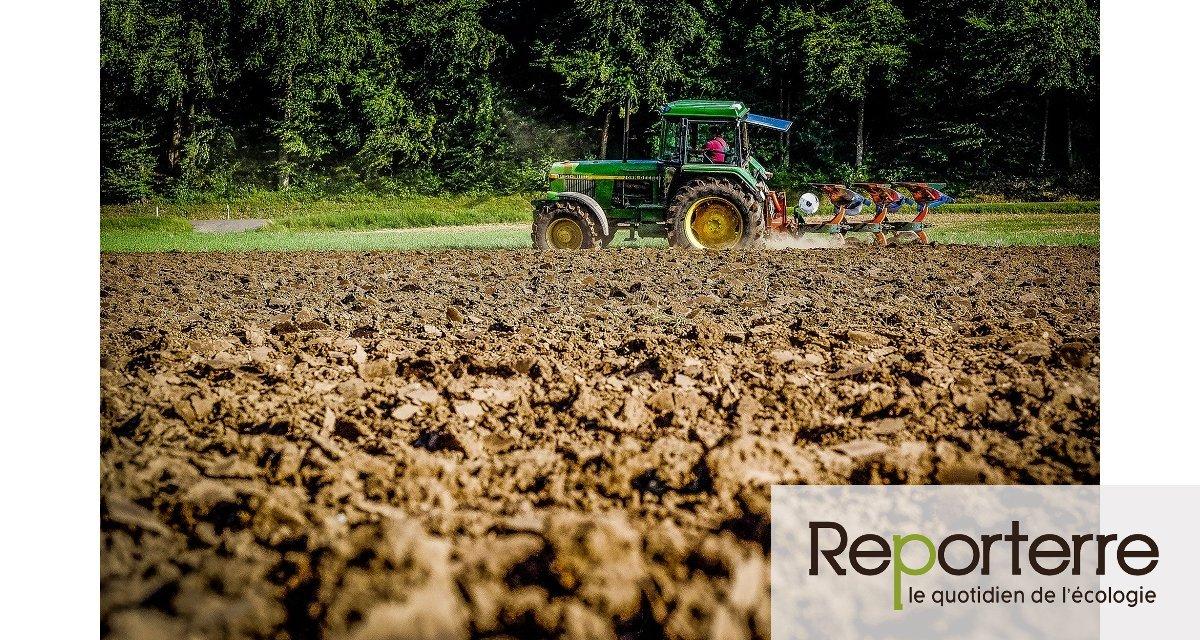 ONG et syndicats demandent un plan pour une transition sociale et écologique de l'agriculture