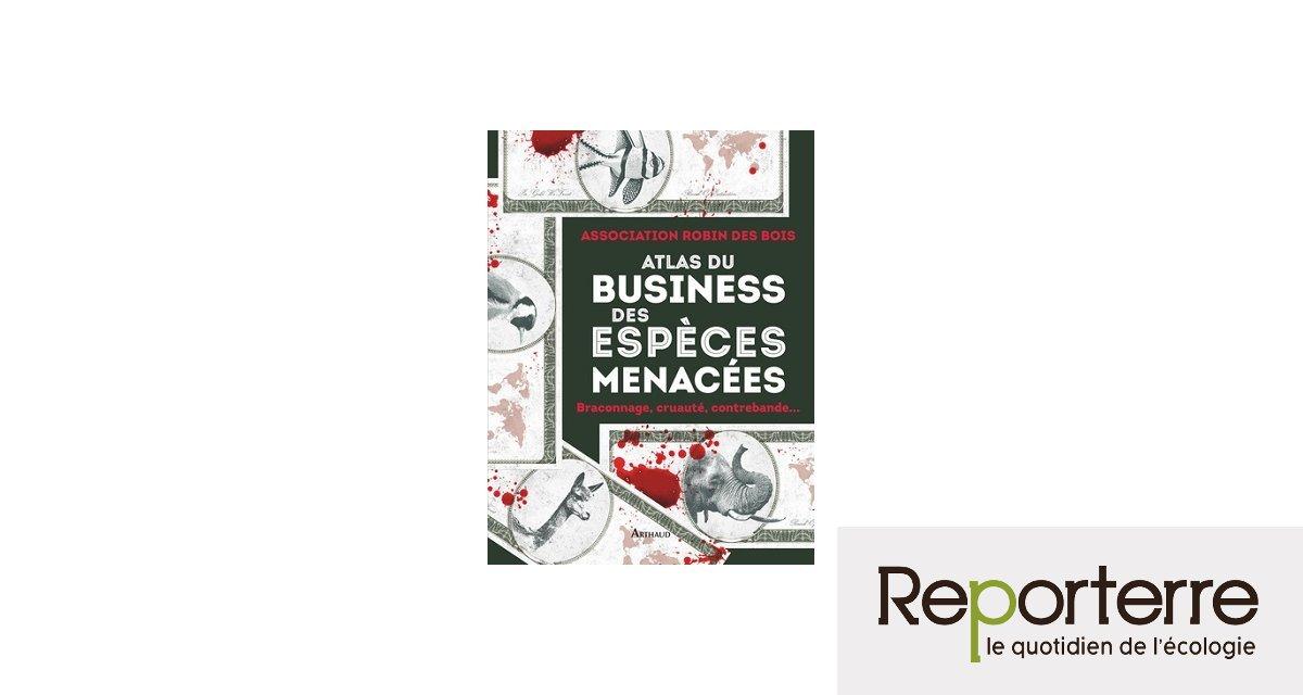 Espèces menacées : le business de l'extinction animale