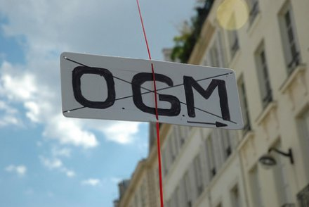 "La France recule en Europe face aux lobbies <span class=""caps"">OGM</span>"