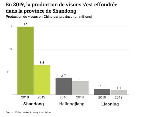Effondrement de la production de visons en 2019.