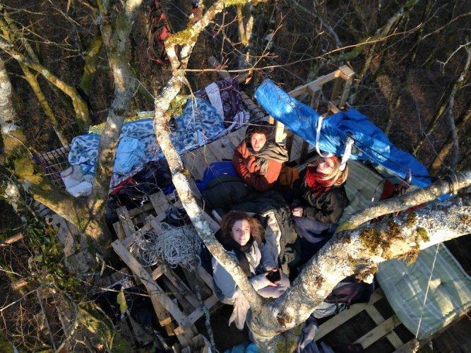"""<span class=""""caps"""">EXCLUSIF</span> - À Bure, dans un arbre du bois Lejuc, que les militants ré-occupent"""