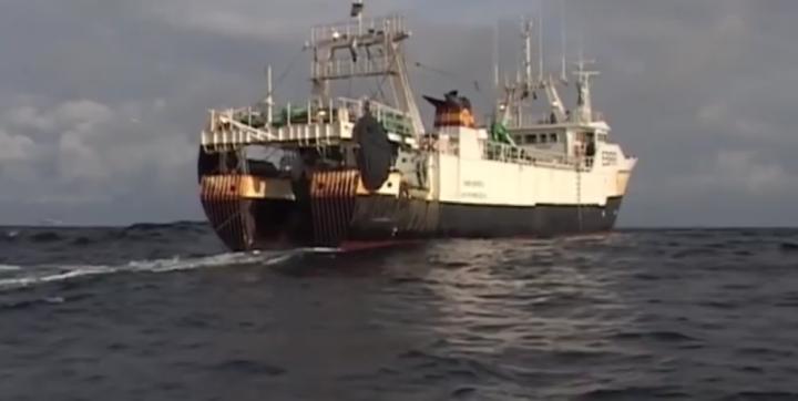 La pêche en eaux profondes est enfin interdite par l'Europe