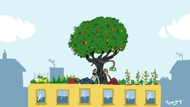 L'agriculture urbaine doit rester un bien commun, pas une activité commerciale