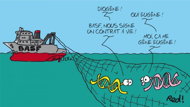 """<span class=""""caps"""">BASF</span>, le géant de la chimie mondiale s'approprie labiodiversité desocéans"""