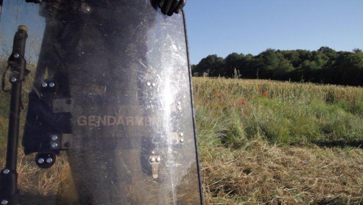 A Bure, l'Etat expulse les occupants de la forêt de Mandres-en-Barrois