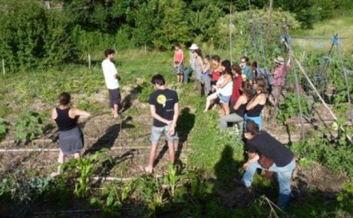 """Ça y est<small class=""""fine""""></small>! J'ai compris ce qu'est la permaculture<small class=""""fine""""></small>!"""