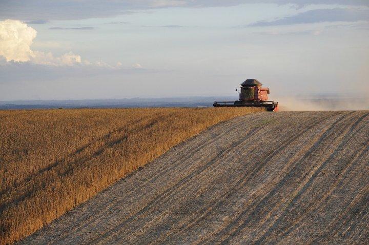 Reporterre : Pour éviter l'effondrement du vivant, il faut changer l'agriculture et l'alimentation