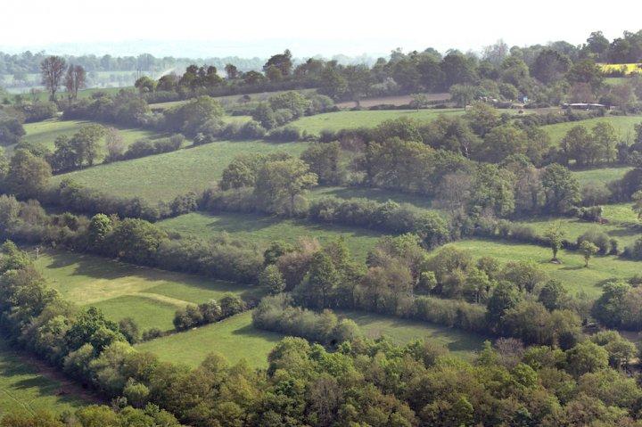 La loi sur la biodiversité reflète une vision utilitariste de la nature