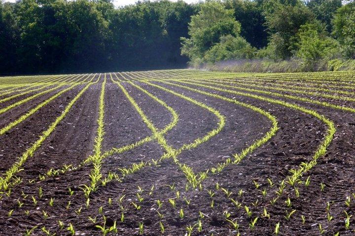 """«<small class=""""fine""""></small>La politique agricole commune doit être profondément réformée<small class=""""fine""""></small>»"""