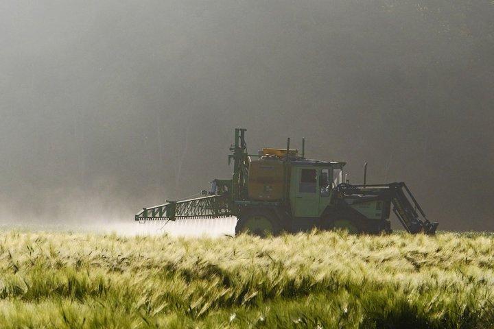 """Après le glyphosate, les pesticides <span class=""""caps"""">SDHI</span>, nouveau danger sanitaire<small class=""""fine""""></small>?"""