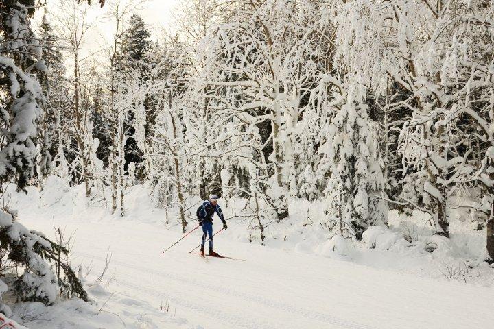Ski alpin à l'arrêt: la revanche du ski de fond et des raquettes