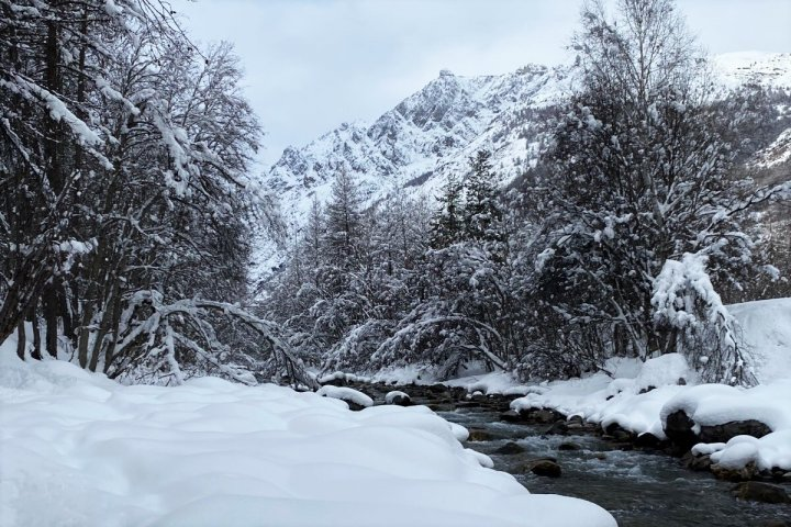 Cinq propositions pour sortir la montagne du tout-ski