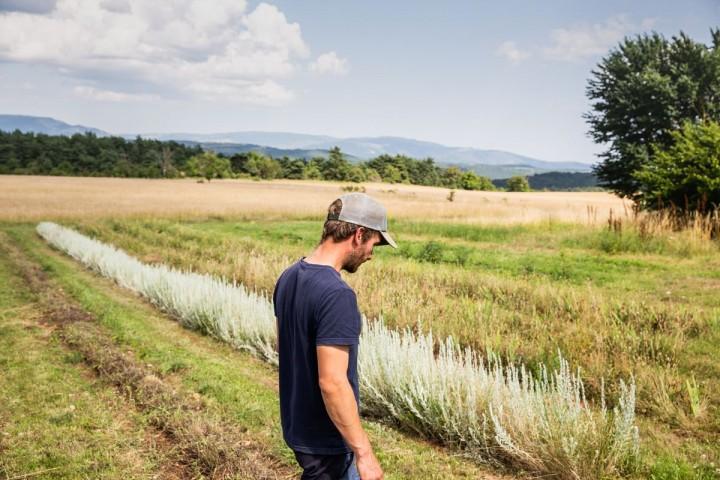 Autogestion et propriété collective, la vie paysanne foisonnante du Larzac
