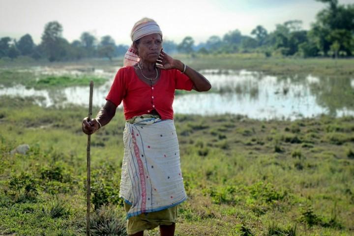 """En Inde, les crues du Brahmapoutre sont devenues «<small class=""""fine d-inline""""></small>invivables<small class=""""fine d-inline""""></small>»"""