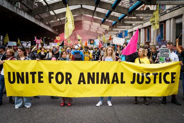 Au Royaume-Uni, le gouvernement veut durcir les peines contre les militants écologistes