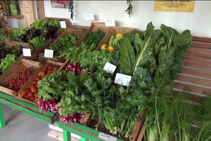 En Ile-de-France, Les Républicains asphyxient l'agriculture biologique