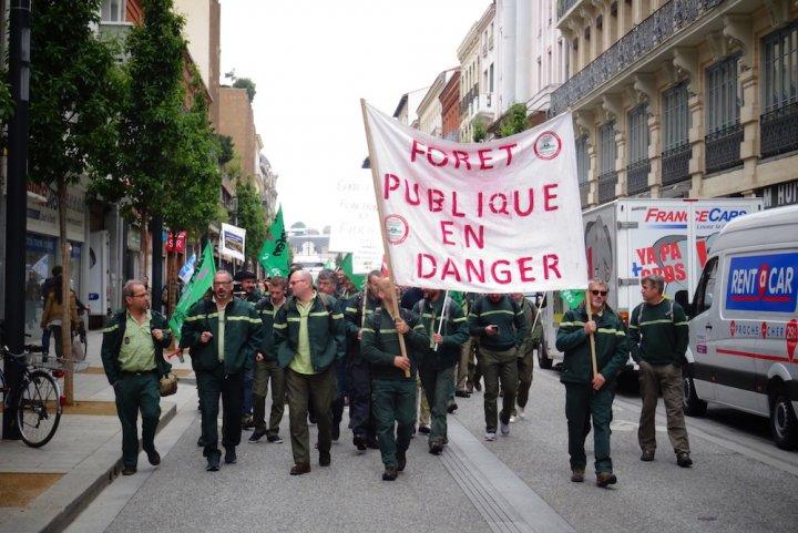 Les forestiers se mobilisent contre l'industrialisation de la forêt
