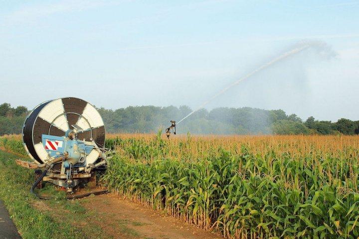 L'eau, source de conflits entre agriculteurs et défenseurs del'environnement