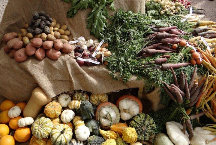 L'Europe pourrait affaiblir les règles de l'agriculture biologique